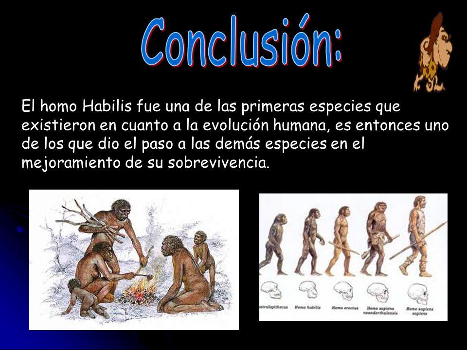 Conclusión: