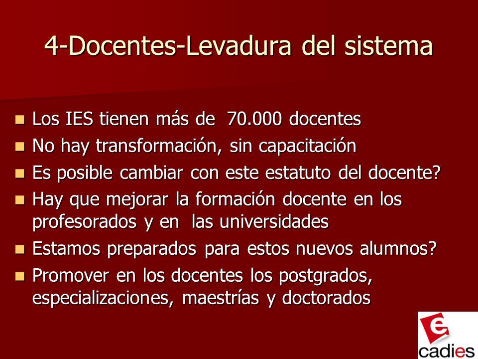 4-Docentes-Levadura del sistema