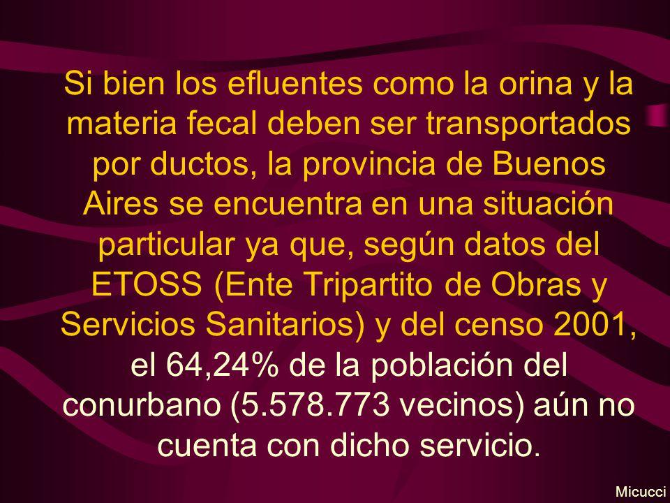 Si bien los efluentes como la orina y la materia fecal deben ser transportados por ductos, la provincia de Buenos Aires se encuentra en una situación particular ya que, según datos del ETOSS (Ente Tripartito de Obras y Servicios Sanitarios) y del censo 2001, el 64,24% de la población del conurbano (5.578.773 vecinos) aún no cuenta con dicho servicio.