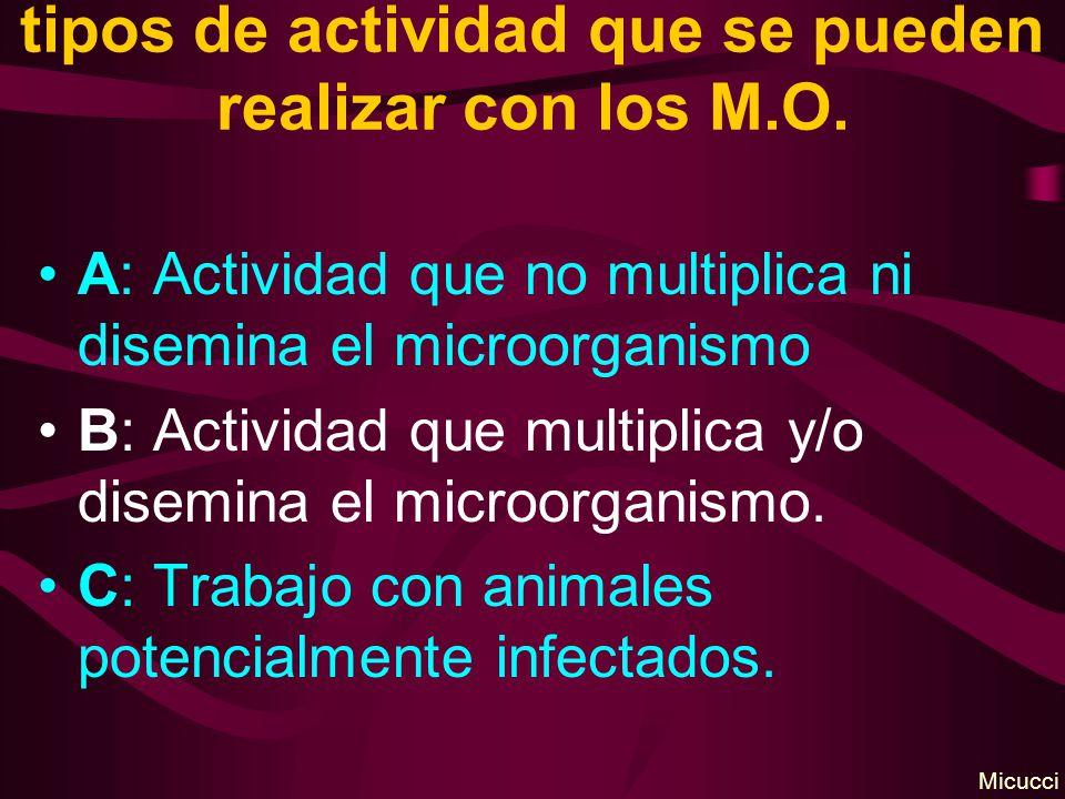 tipos de actividad que se pueden realizar con los M.O.