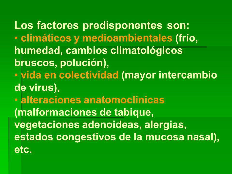 Los factores predisponentes son: