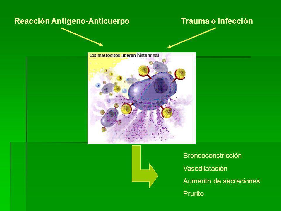 Reacción Antígeno-Anticuerpo