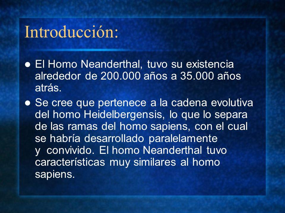 Introducción: El Homo Neanderthal, tuvo su existencia alrededor de 200.000 años a 35.000 años atrás.