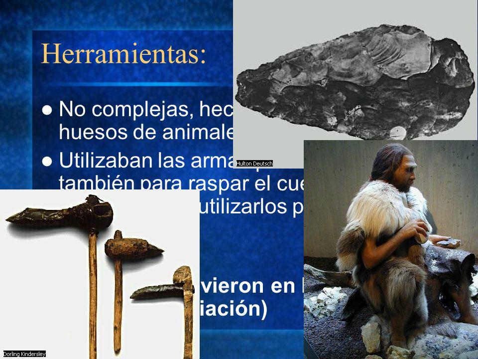 Herramientas: No complejas, hechas de piedras o huesos de animales.
