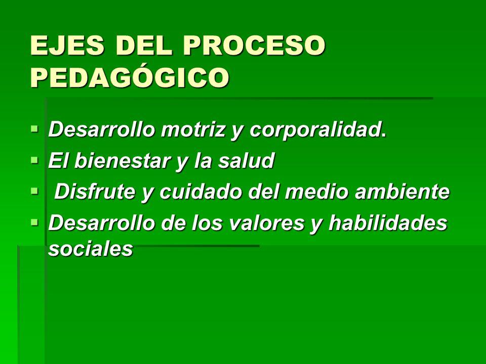 EJES DEL PROCESO PEDAGÓGICO