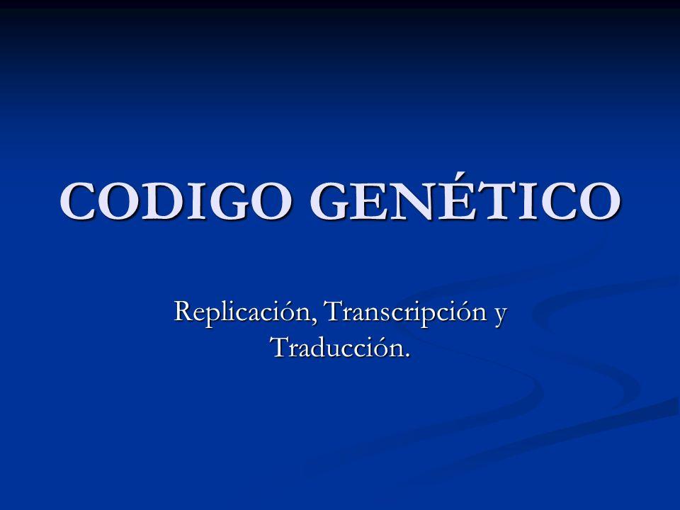 Replicación, Transcripción y Traducción.