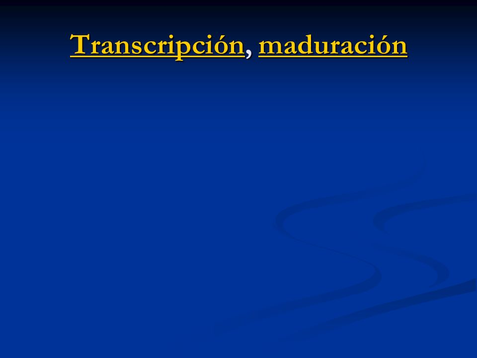 Transcripción, maduración