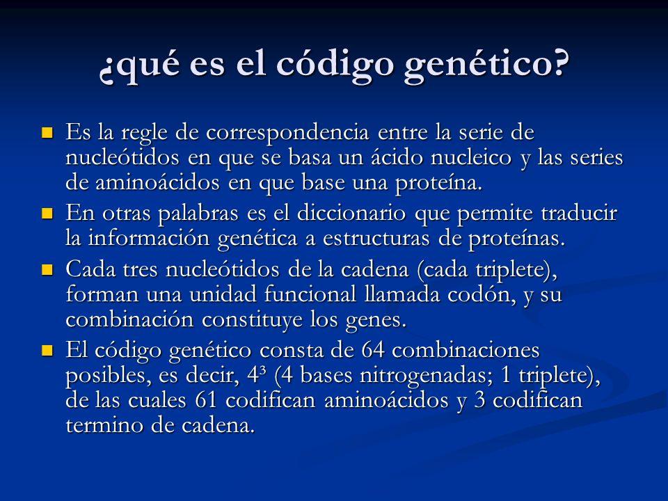¿qué es el código genético