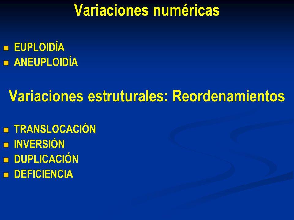 Variaciones numéricas Variaciones estruturales: Reordenamientos