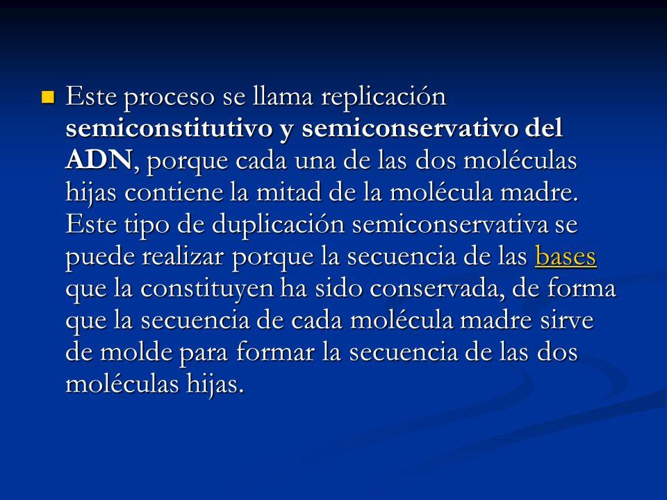 Este proceso se llama replicación semiconstitutivo y semiconservativo del ADN, porque cada una de las dos moléculas hijas contiene la mitad de la molécula madre.