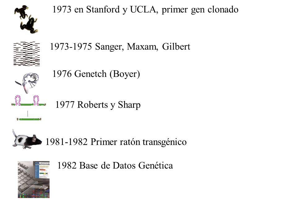 1973 en Stanford y UCLA, primer gen clonado
