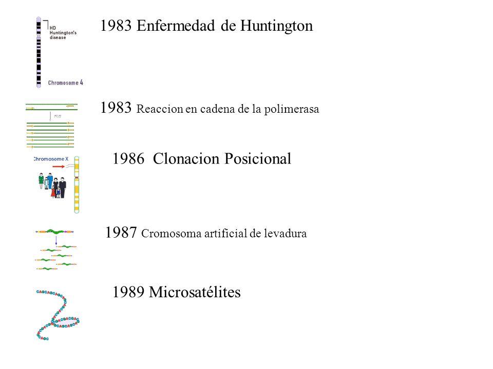1983 Enfermedad de Huntington