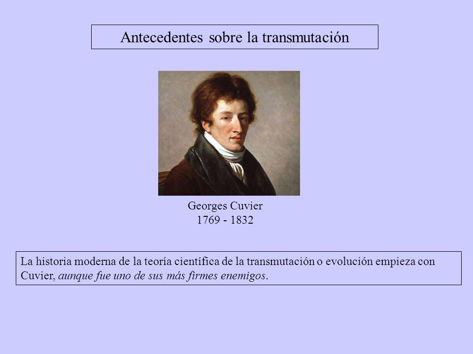 Antecedentes sobre la transmutación