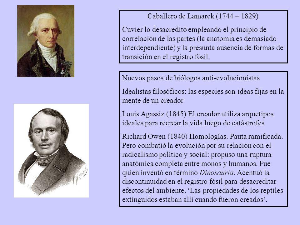 Caballero de Lamarck (1744 – 1829)