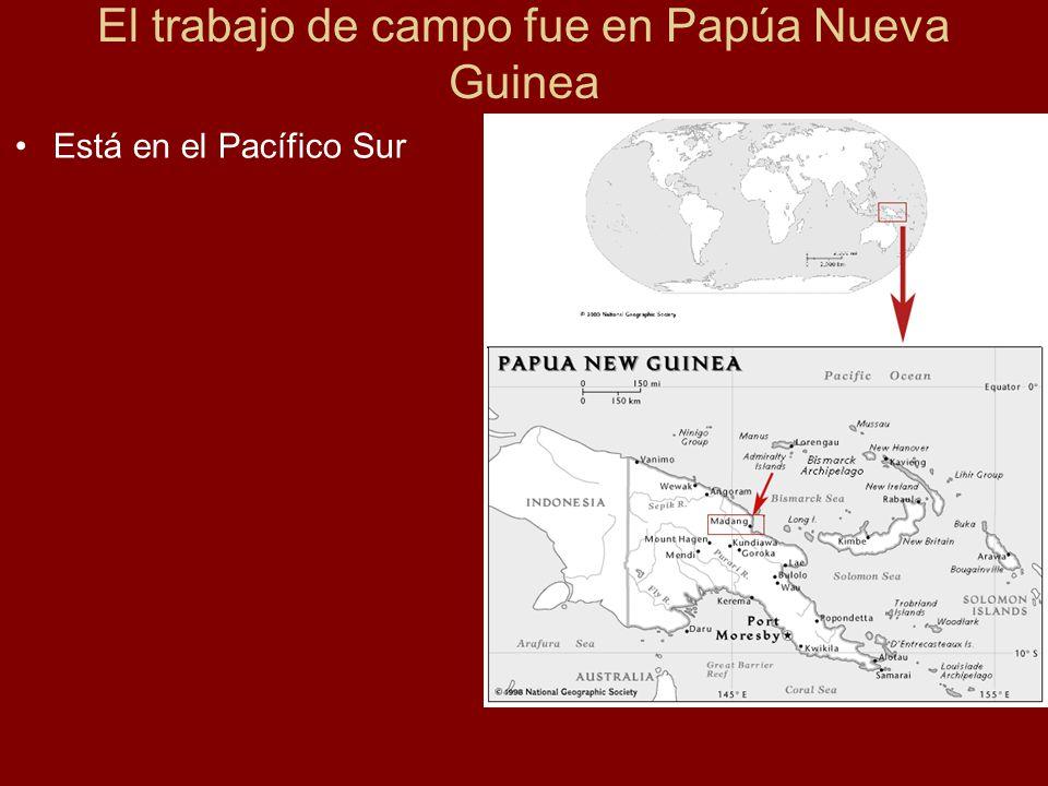 El trabajo de campo fue en Papúa Nueva Guinea