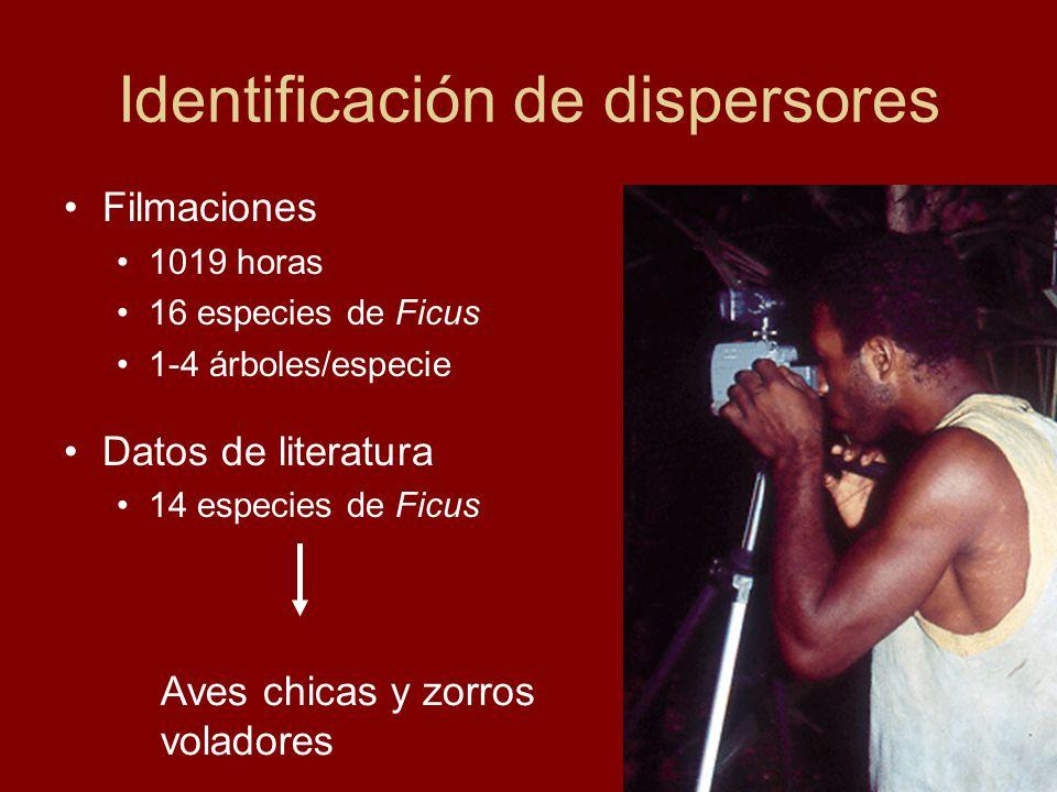 Identificación de dispersores