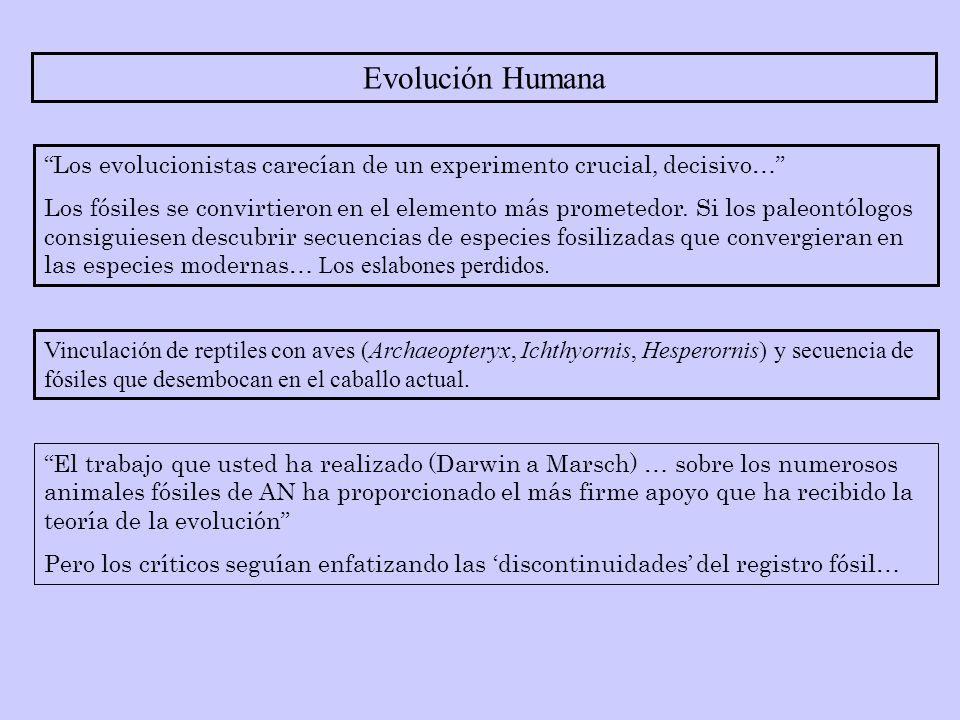 Evolución Humana Los evolucionistas carecían de un experimento crucial, decisivo…