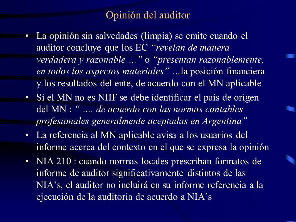 Opinión del auditor