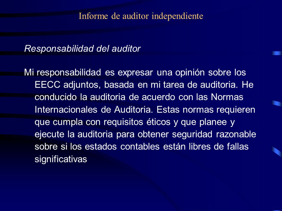 Informe de auditor independiente