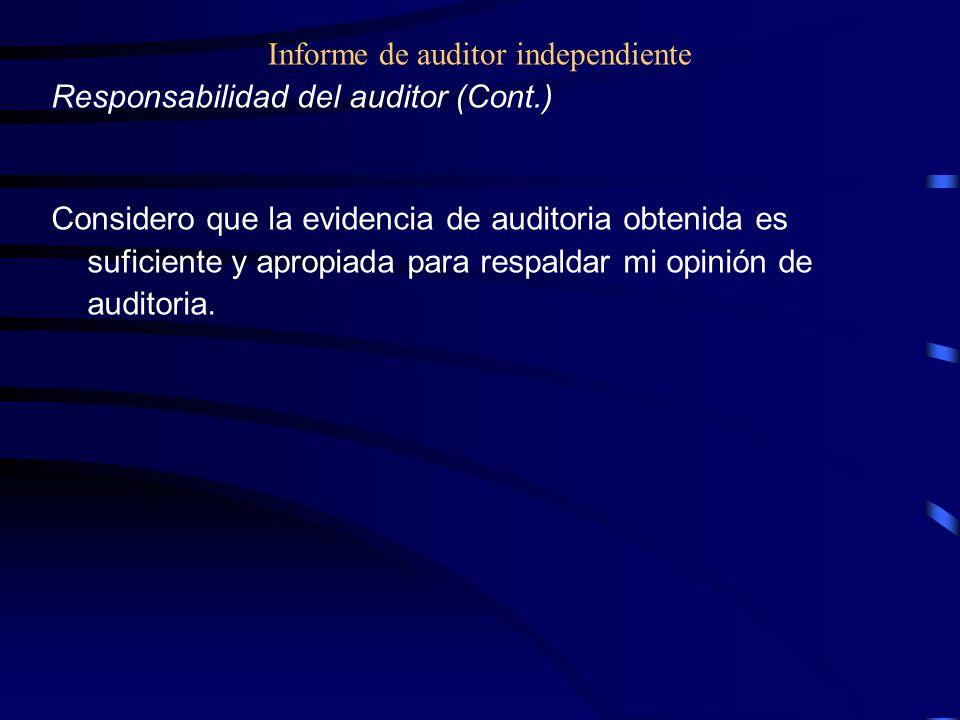 Informe de auditor independiente