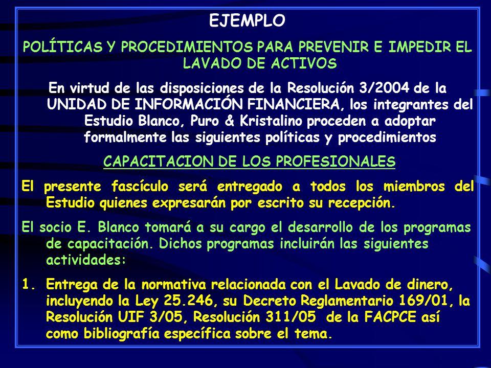 CAPACITACION DE LOS PROFESIONALES