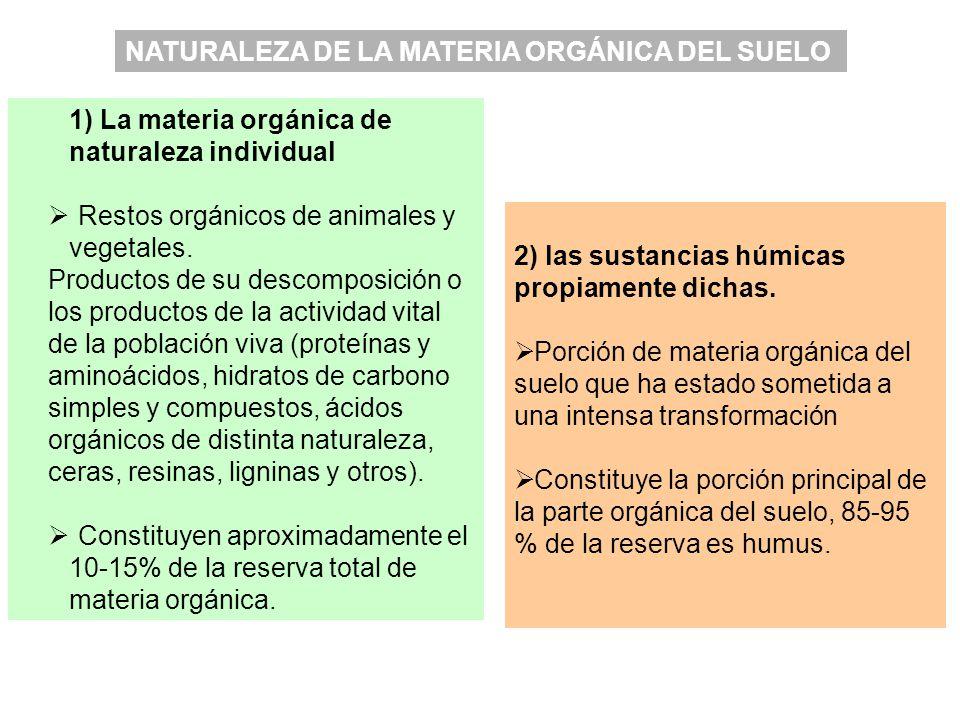 NATURALEZA DE LA MATERIA ORGÁNICA DEL SUELO