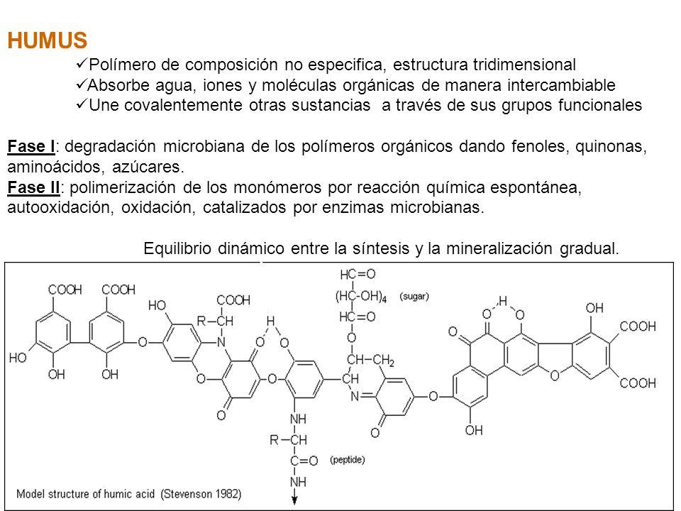 HUMUS Polímero de composición no especifica, estructura tridimensional