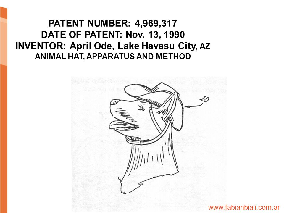 ANIMAL HAT APPARATUS AND METHOD PATENT NUMBER: 4,969,317