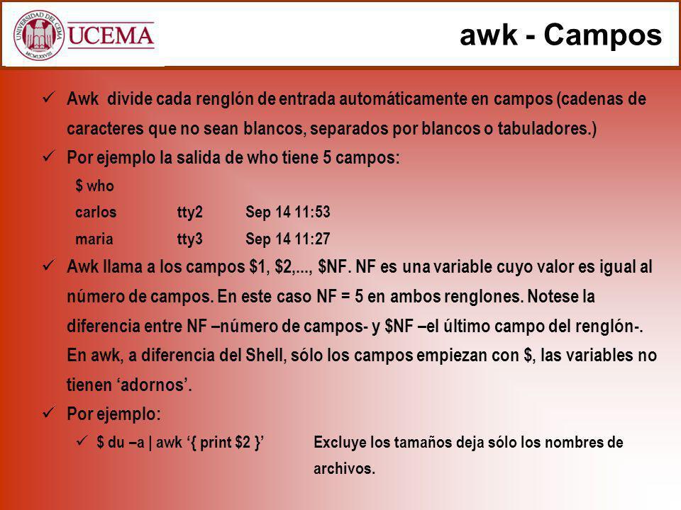 awk - Campos