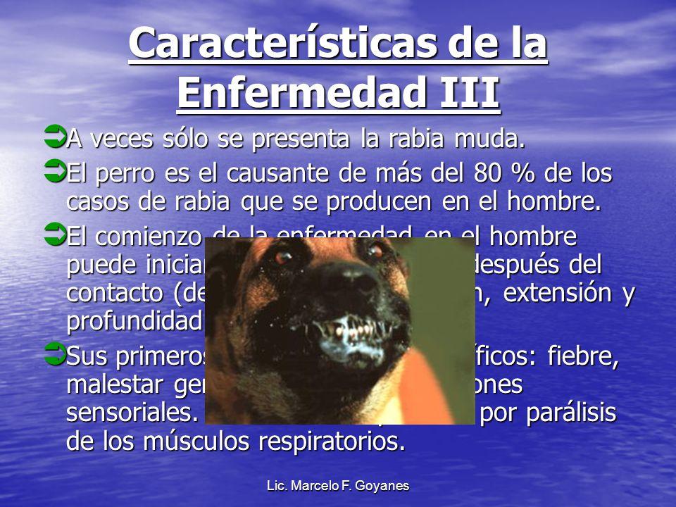 Características de la Enfermedad III
