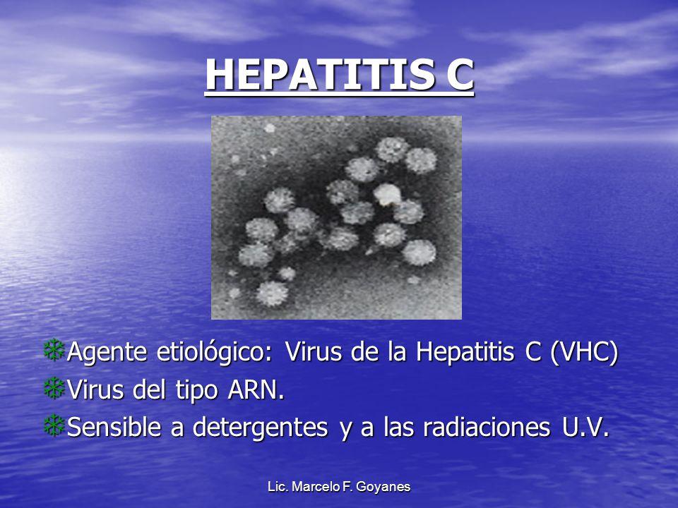 HEPATITIS C Agente etiológico: Virus de la Hepatitis C (VHC)