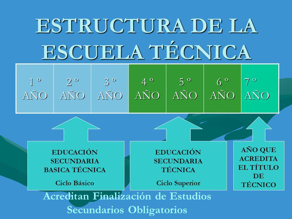 ESTRUCTURA DE LA ESCUELA TÉCNICA