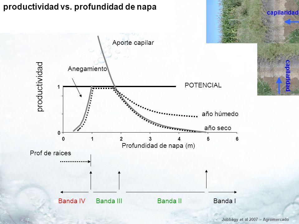 productividad vs. profundidad de napa