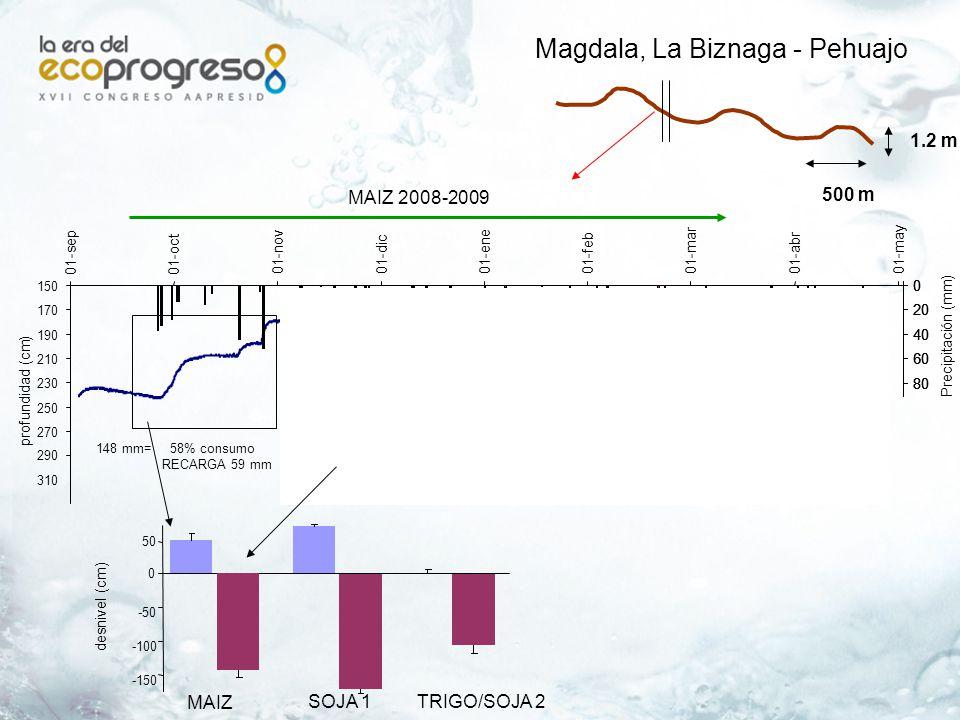 Magdala, La Biznaga - Pehuajo