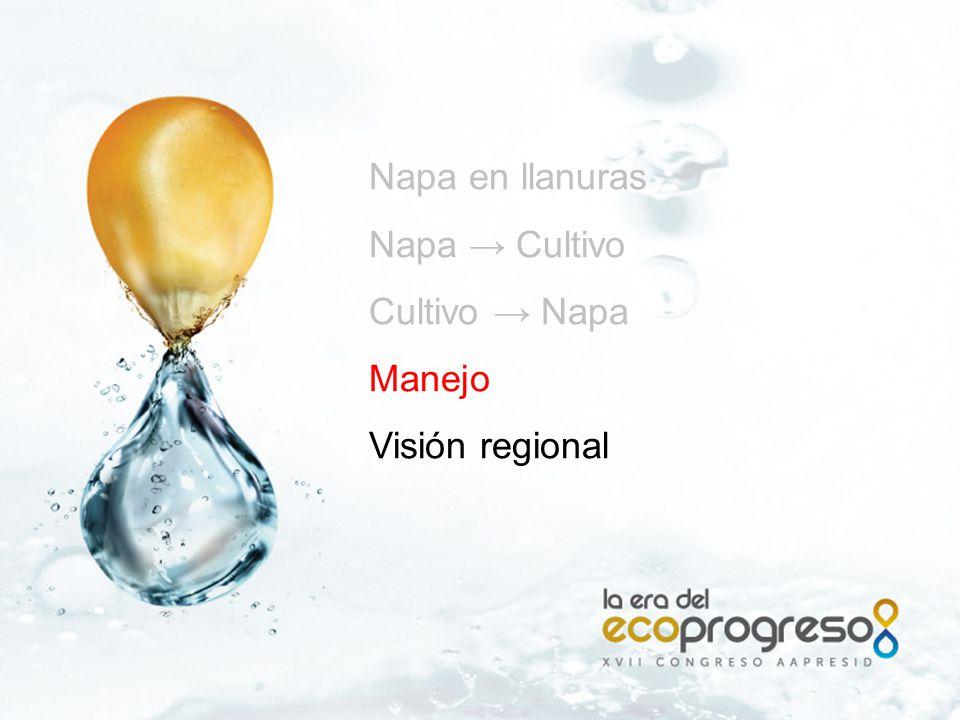 Napa en llanuras Napa → Cultivo Cultivo → Napa Manejo Visión regional