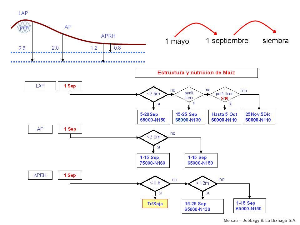 Napa & reglas de decisión – Magdala, La Biznaga S.A. (Pehuajo)