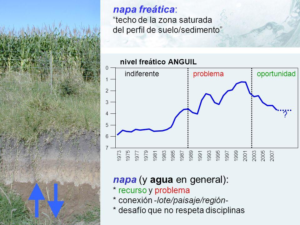 napa (y agua en general):