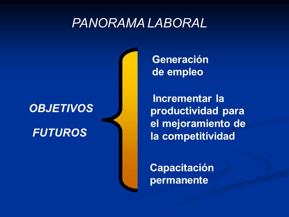 PANORAMA LABORAL OBJETIVOS FUTUROS Generación de empleo