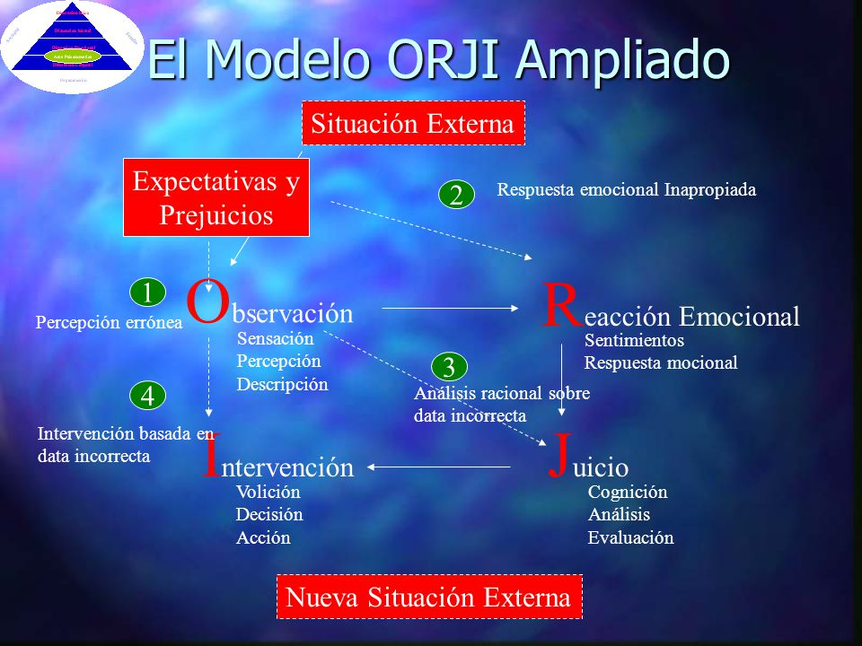 El Modelo ORJI Ampliado