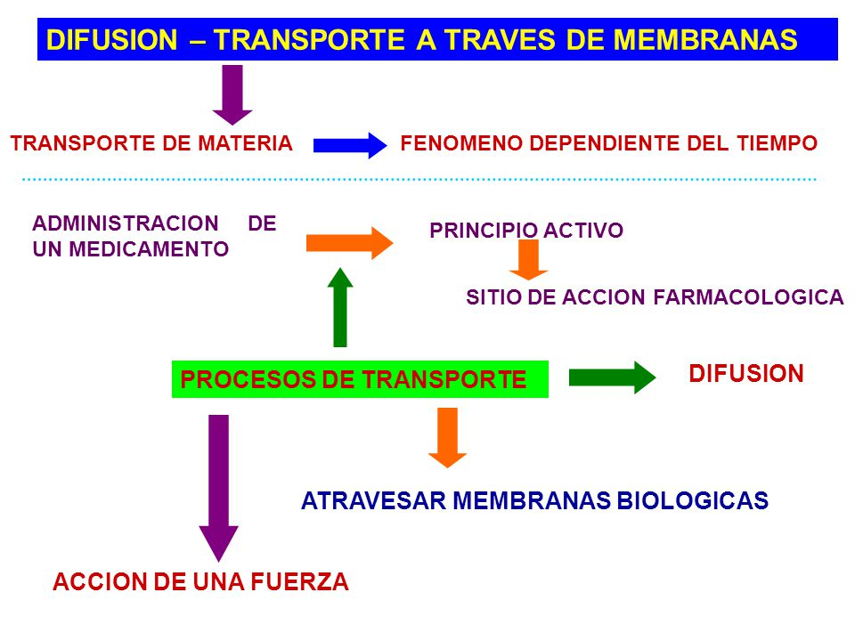 DIFUSION – TRANSPORTE A TRAVES DE MEMBRANAS