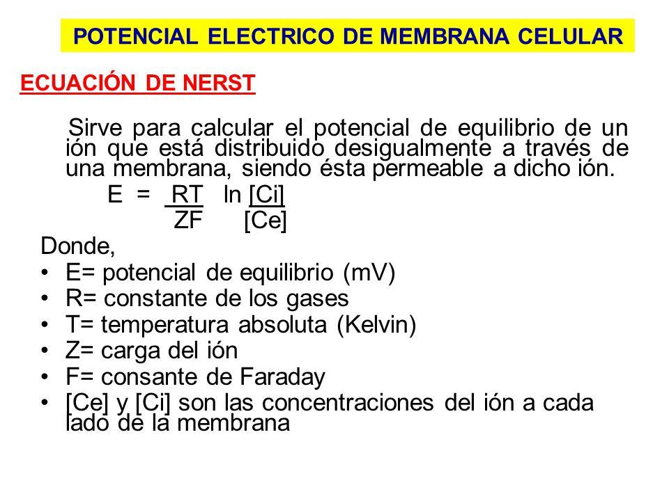POTENCIAL ELECTRICO DE MEMBRANA CELULAR