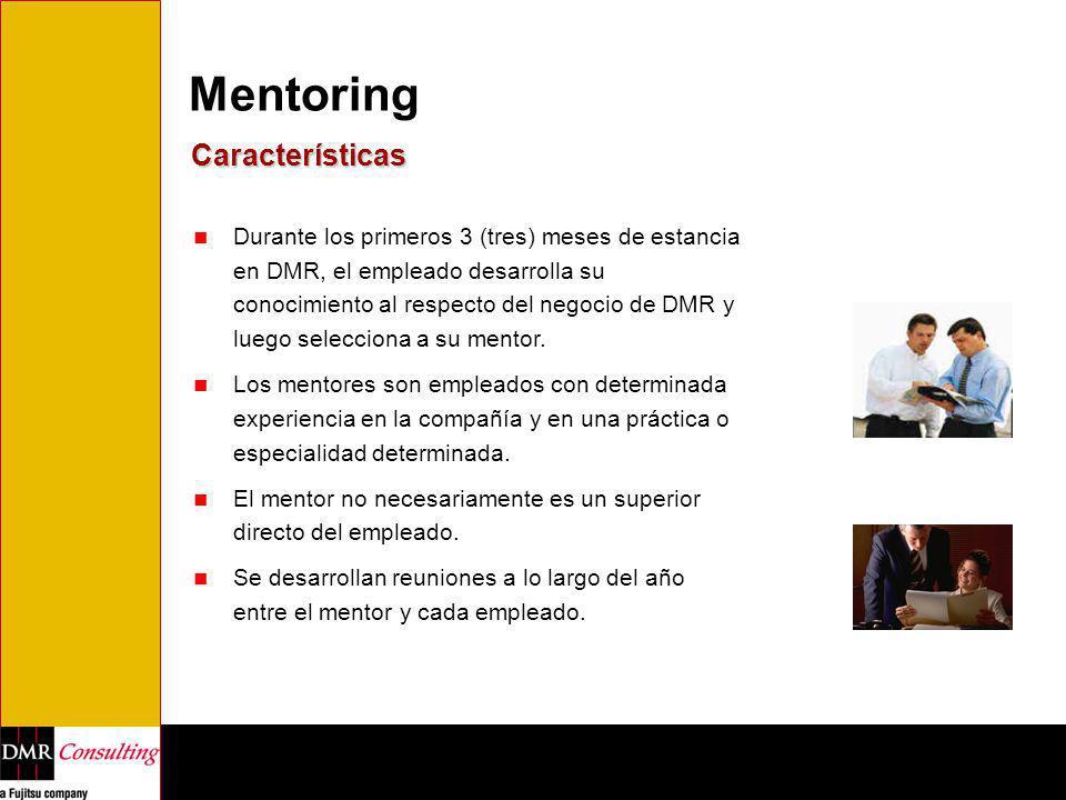 Mentoring Características