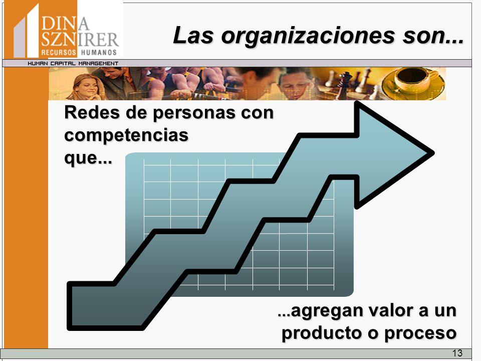 Las organizaciones son...