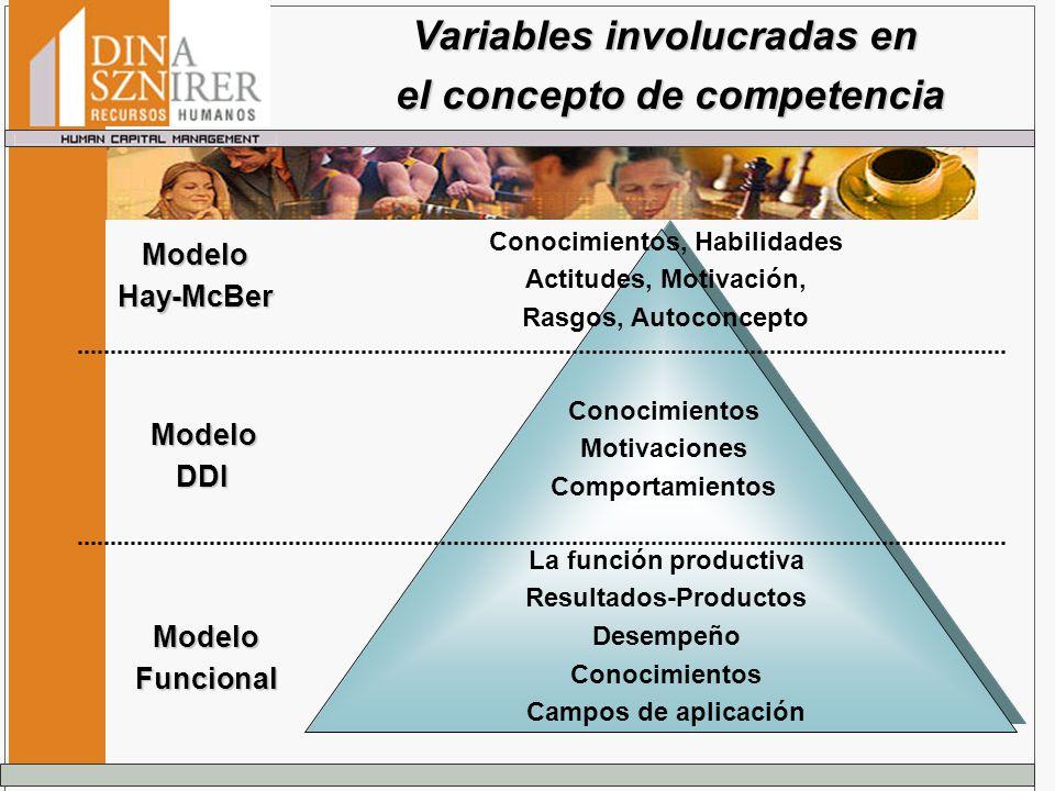 Variables involucradas en el concepto de competencia