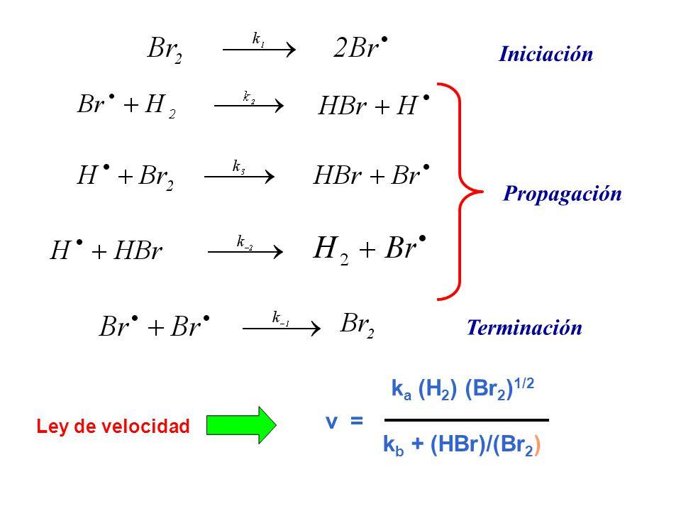 Iniciación Propagación Terminación ka (H2) (Br2)1/2 v =