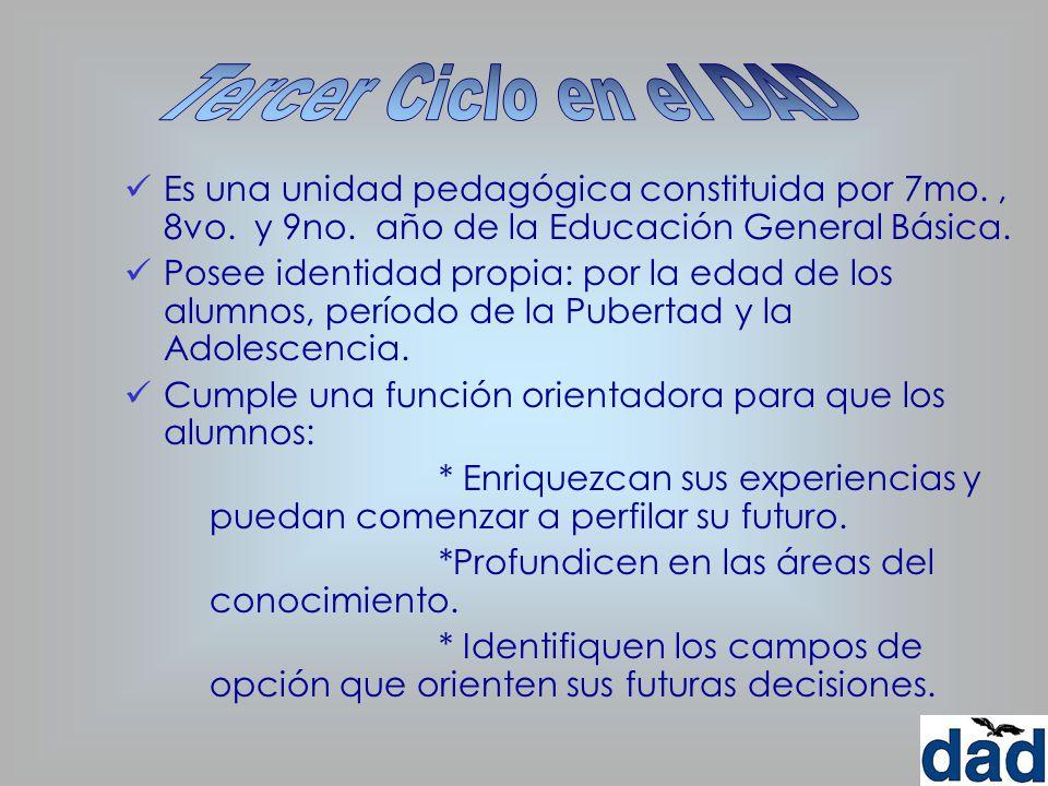 Tercer Ciclo en el DAD Es una unidad pedagógica constituida por 7mo. , 8vo. y 9no. año de la Educación General Básica.
