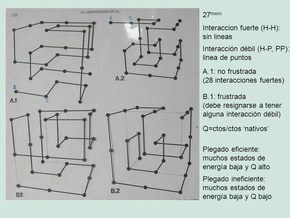 27mero Interaccion fuerte (H-H): sin lineas. Interacción débil (H-P, PP): linea de puntos. A.1: no frustrada.