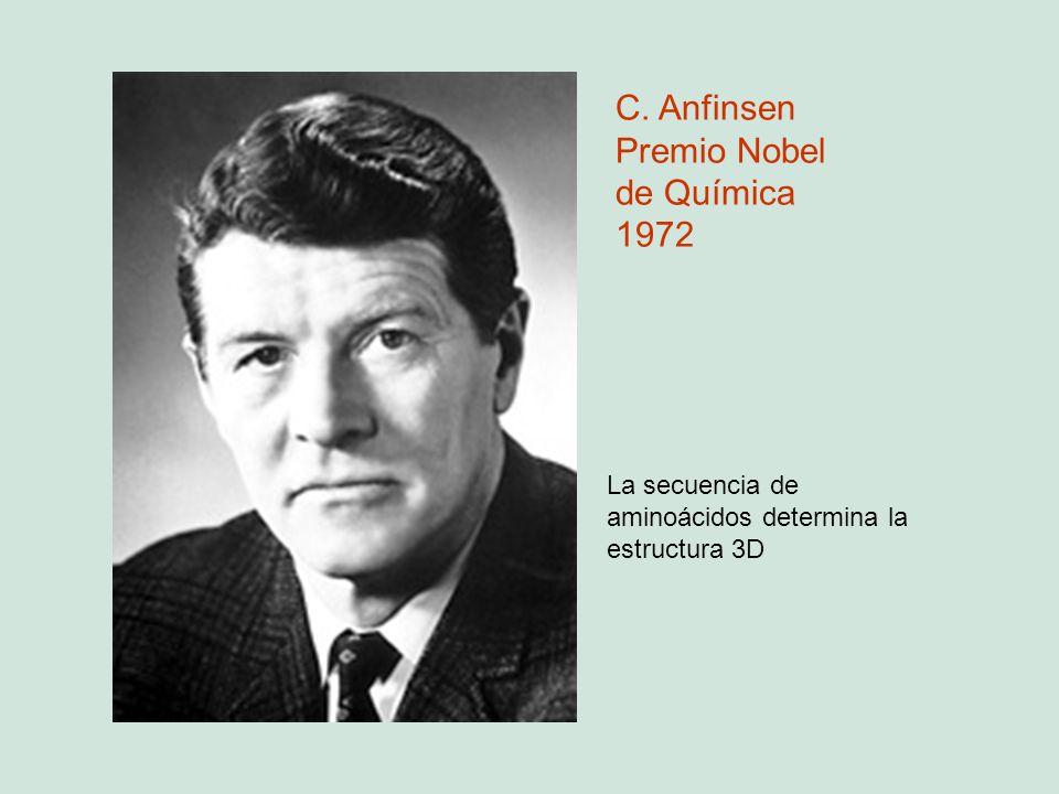 Premio Nobel de Química 1972