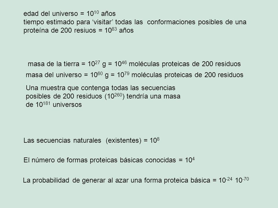 edad del universo = 1010 años tiempo estimado para 'visitar' todas las conformaciones posibles de una proteína de 200 resiuos = 1083 años