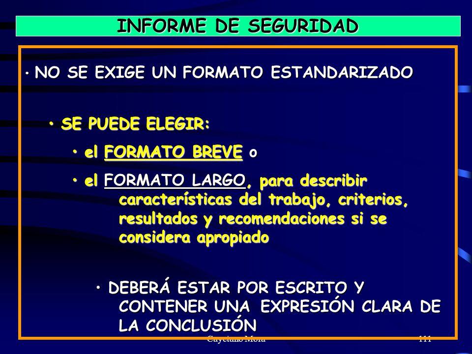 INFORME DE SEGURIDAD SE PUEDE ELEGIR: el FORMATO BREVE o